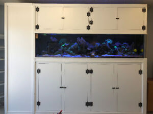 240 Gallon Saltwater Reef Tank for sale
