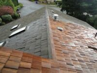 What 'They' DON'T Want You To Know About Your Cedar Roof...