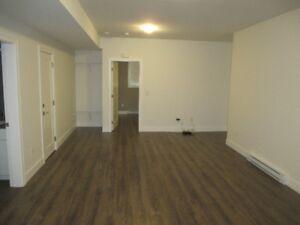 Brand new 1 Bedroom Basement suite