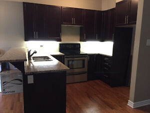 BRAND NEW KITCHEN CABINETS & GRANITE COUNTER TOPS