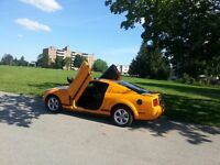 LAMBO DOORS - JUST IN TIME FOR SUMMER