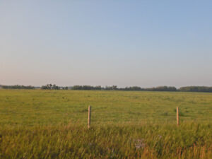 1 Parcel of Real Estate-Clyde, AB-Unreserved Auction