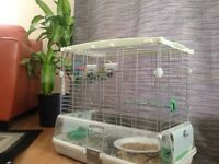 2 budgies and a nice cage for $50