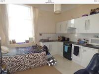 Super studio flat Teignmouth