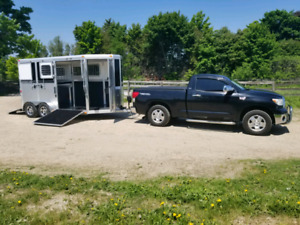 Commercially Insured Horse Trailering and Trailer Training