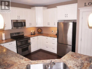 COUNTERTOPS AND SINK ** PRICED TO SELL ** OPEN TO OFFERS !!