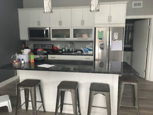 1 bdrm for rent - Available Jan 1st - March 31st