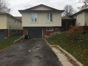 ** Family neighborhood 1+ den lower level for rent in whitby