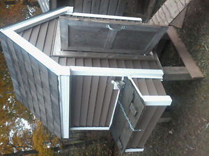 Chicken coop and silkies