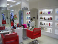 Hair Salon / Spa Furnishings and Movables Clearance
