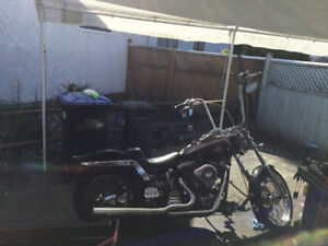 99 Harley Softail awesome and ready for the season
