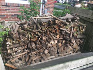 Dry, cut firewood, great for backyard or camping