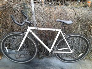 Beautiful Moose Fixie and Single Speed Bike