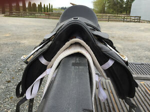 Circuit Dressage saddle for sale