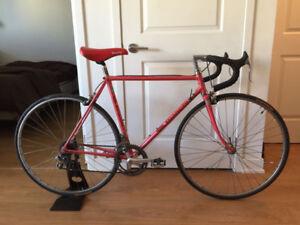 Vintage Bianchi Road Bike