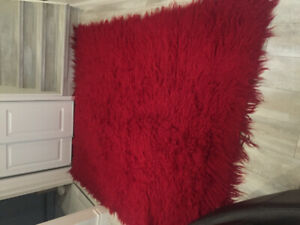 Red retro shag rug