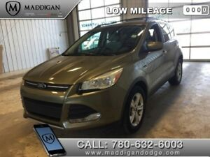 2013 Ford Escape SE  - Bluetooth -  Heated Seats - $131.68 B/W