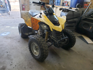 Canam ds250