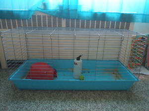 RABBIT/GUINEA PIG CAGE AND ACCESSORIES!