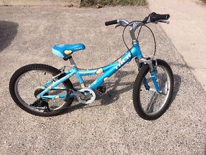 Trek MT60 bicycle