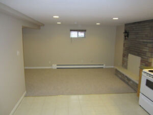 Immaculate 1 bdr. basement apartment for rent, Hamilton mountain