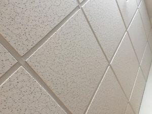 Drop Ceiling Material