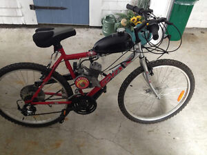 Gas powered bicycle, 49cc for sale (brand new)