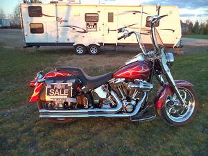 2006 flstf custom Harley fatboy
