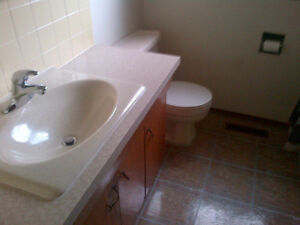 North West Edmonton 2 bedrooms Basement Suite for rent Edmonton Edmonton Area image 5
