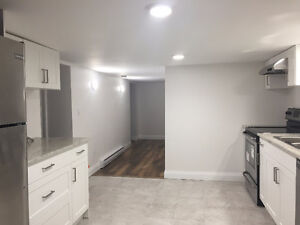 OPEN HOUSE TODAY - BRAND NEW 2 Bedroom Lower Level Apartment