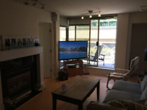 1 bedroom in 2 bedroom Apartment Available! Yaletown -$1225