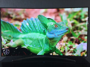 Samsung 55 inch curved screen tv