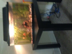 10 gallon fish tank with fish and table