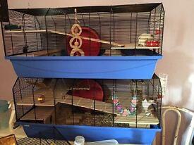 Alexander hamster cage