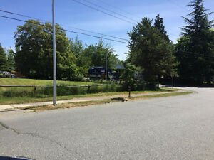 3 Building Lots for Sale in Cloverdale!  6000 sq feet each