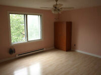 STUDIO 2 1/2 NEAR UNIVERSITE DE MONTREAL - ONLY 320 DOLLARS OR L