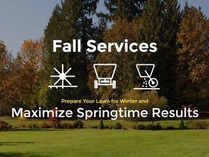Premium Fall Lawn Care Service | Shark Lawn Specialists Stratford Kitchener Area image 2