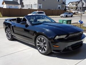 Mustang  GT/California  Special  Convertible    Private  Sale