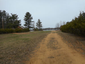 Waterfront Lot Ready for your Retirement Dream Home or Cottage Kawartha Lakes Peterborough Area image 5