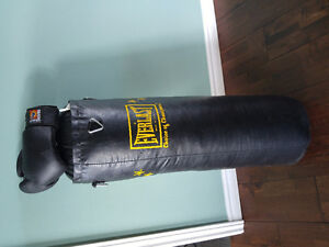 70lb Everlast punching bag with gloves