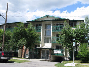 New 2 Bdrm in Downtown, 2 Blks to CTrain, Great Location