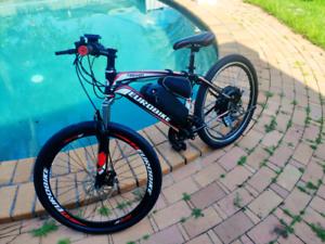 Brand new Electric Bike