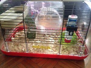 Hamster cage&hamster