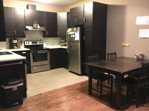All Inclusive Summer Sublet Downtown Ottawa May 1 - Aug 31, 2018