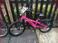 Girls bike (needs brakes fixed)