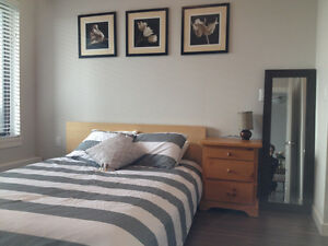 Lower Lonsdale Executive 1 Bedroom