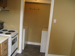 One bedroom basement apartment St. John's Newfoundland image 2