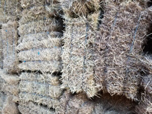 550 SQUARE BALES OF HAY 4 SALE $7/BALE