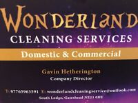 Wonderland cleaning service