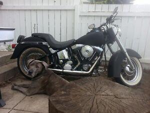 1993 Harley softail